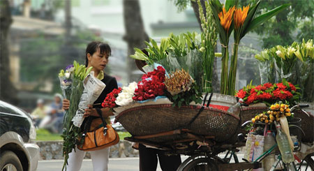 best of vietnam package tours